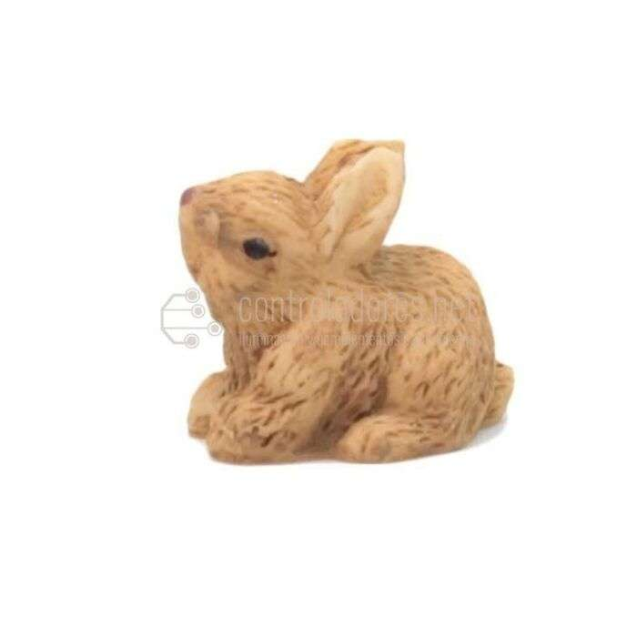Conejo pequeño