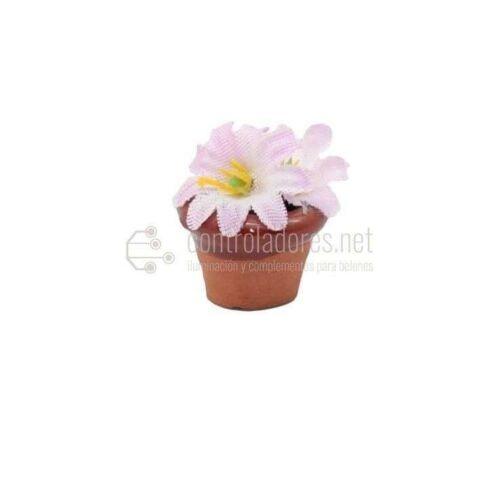 Macetas de flores blancas