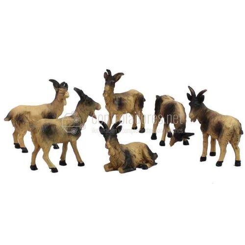 Grupo de 6 Cabras