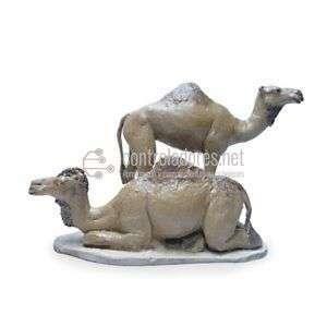 Grupo camellos sin carga