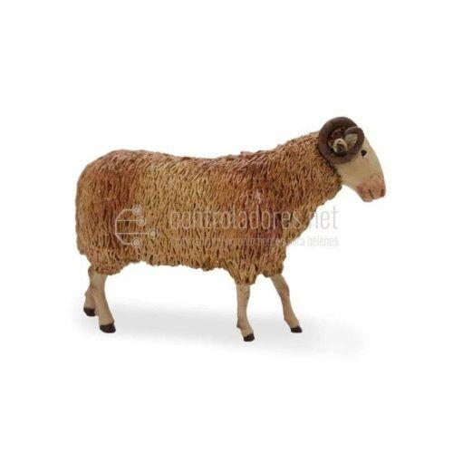 Borrega lana macho cabrio para 18 cm.