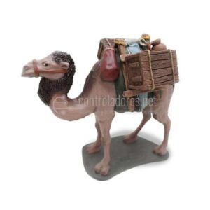 Camello cargado andando Nº 1