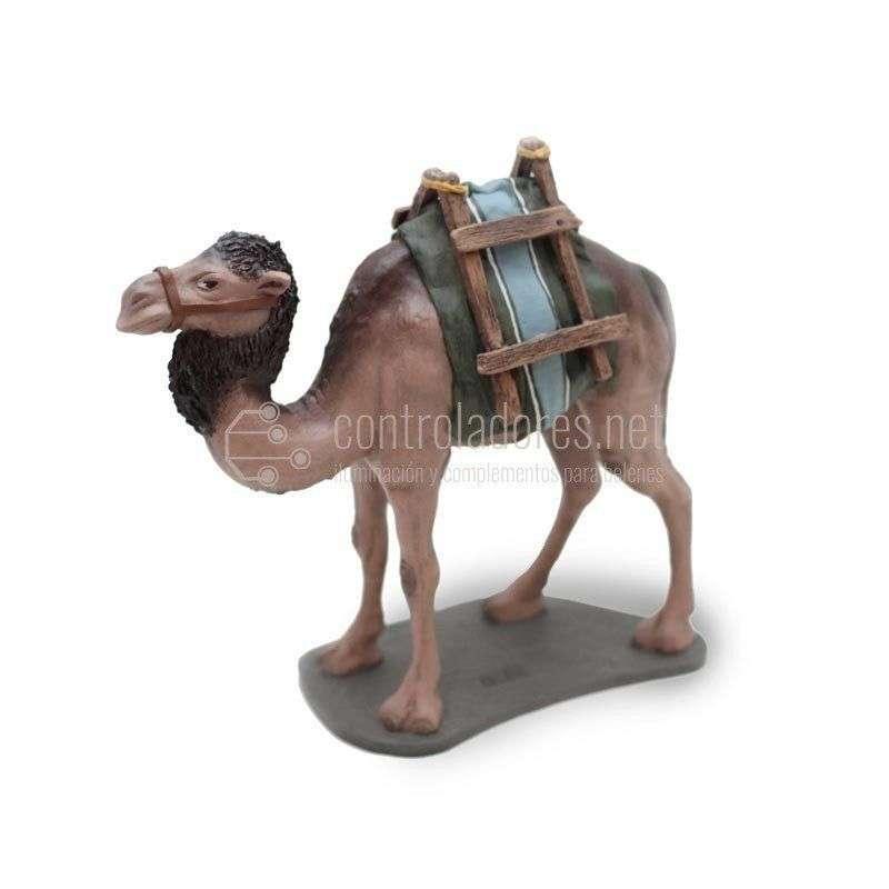 Camello sin carga andando Nº 4
