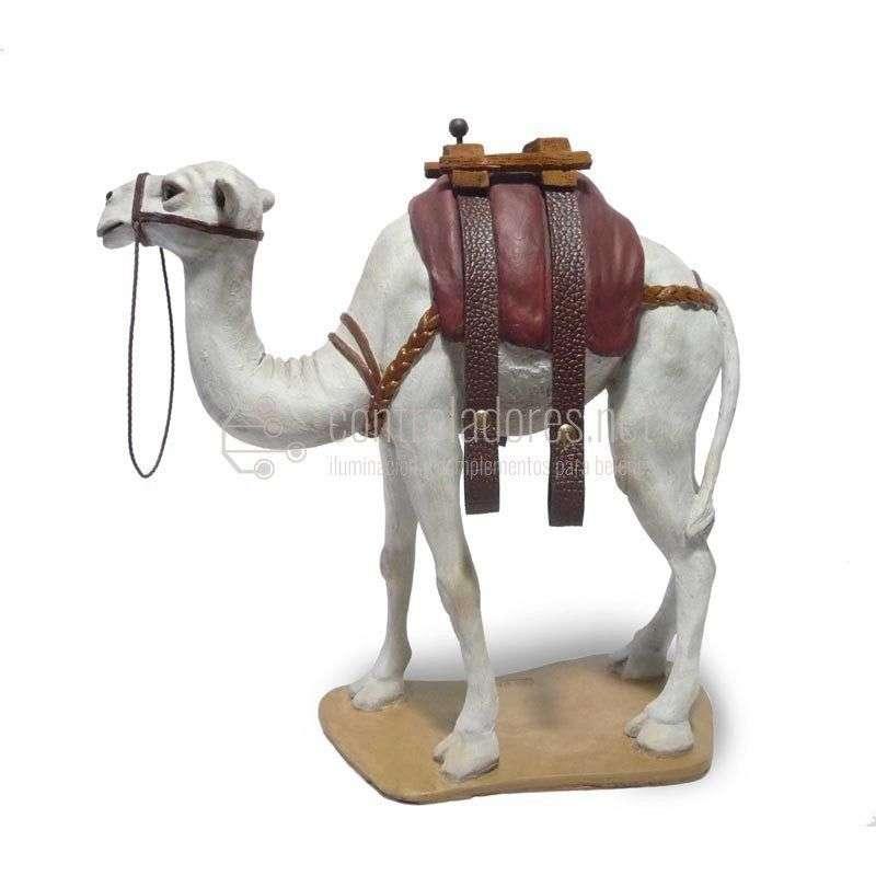 Camello con correas blanco Nº 8