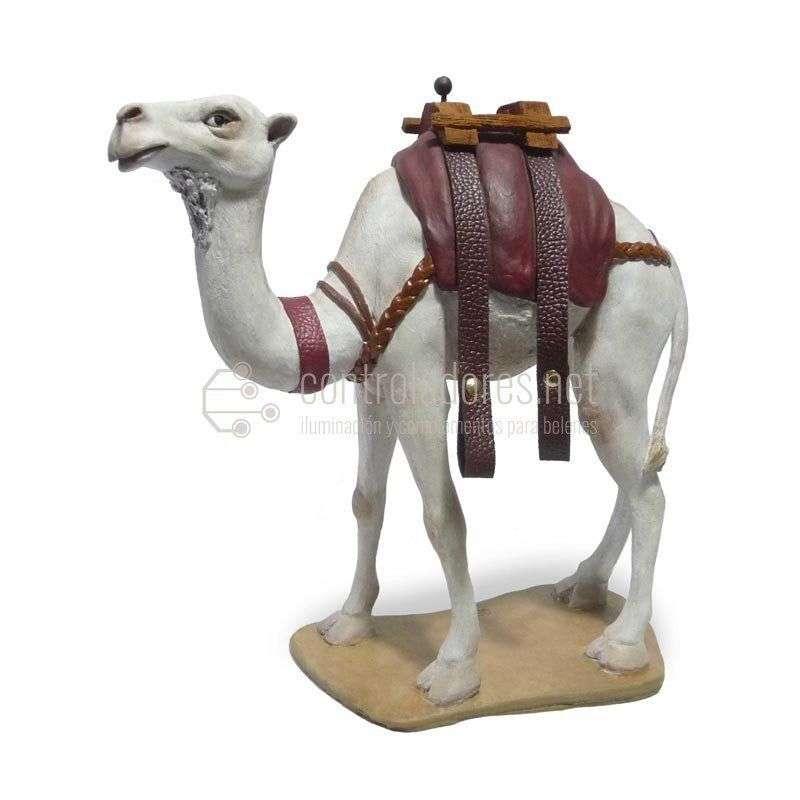 Camello con correas blanco Nº 9
