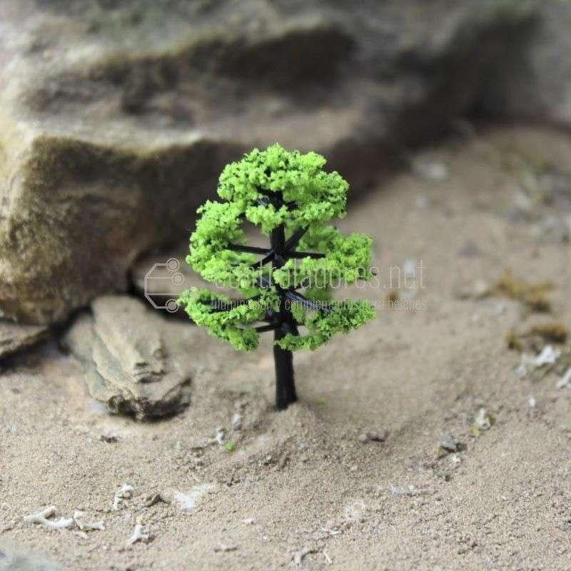 Olmo verde pequeño
