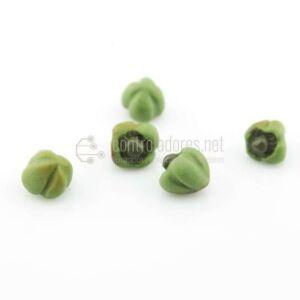 Pimiento verde mediano (5 uds)